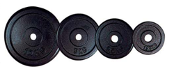 IRON WEIGHTS 2,5 KG AXERFIT